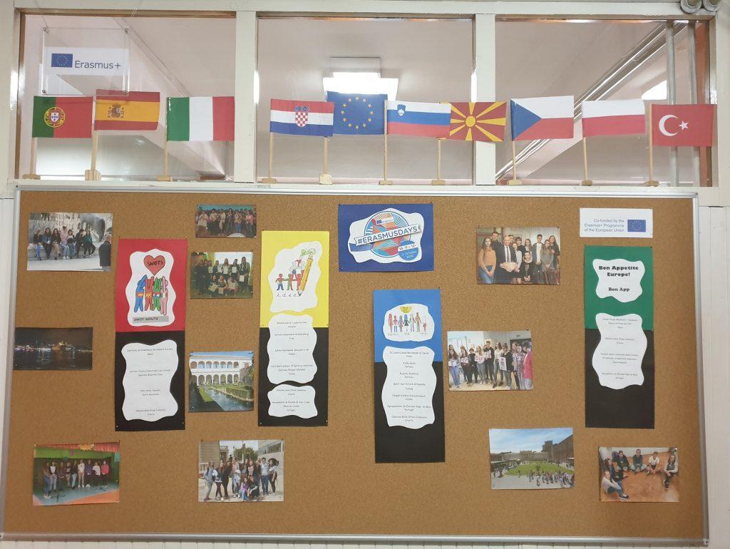 Erasmus-1-2.jpg