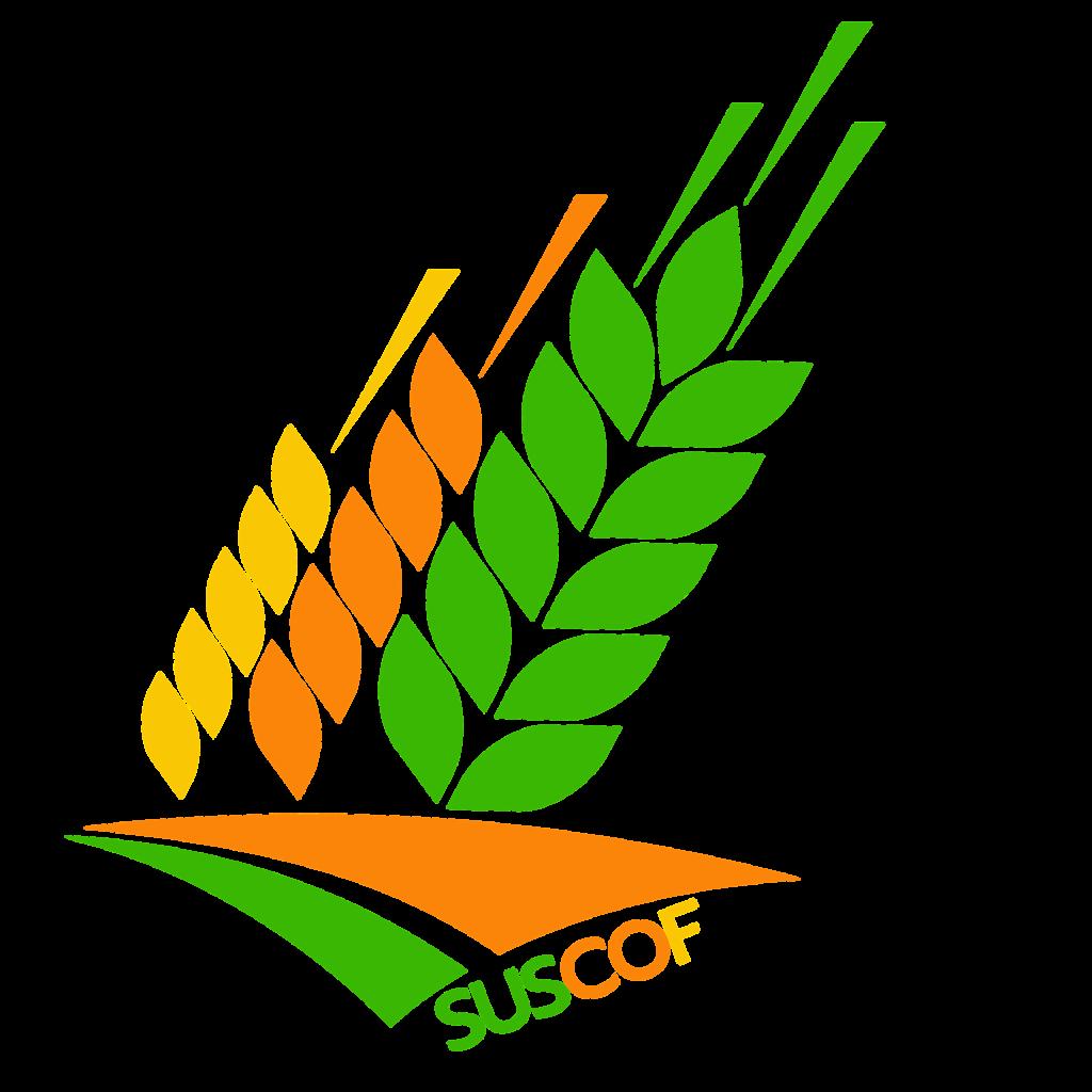 Orjinal-Logo.png